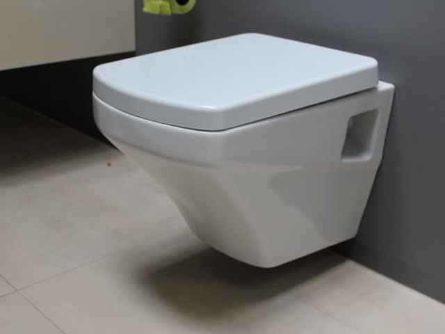 h nge dusch wc sr320 ac90l up ventil taharet bidet taharat soft close wcsitz ebay. Black Bedroom Furniture Sets. Home Design Ideas